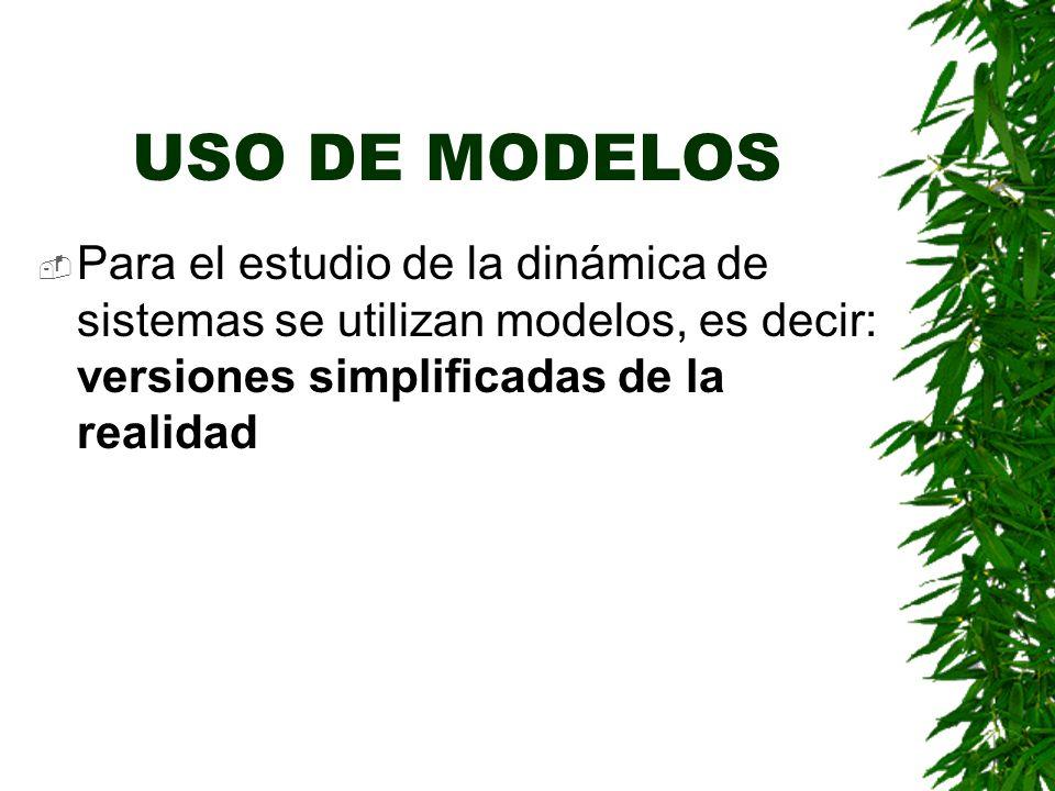 USO DE MODELOS Para el estudio de la dinámica de sistemas se utilizan modelos, es decir: versiones simplificadas de la realidad