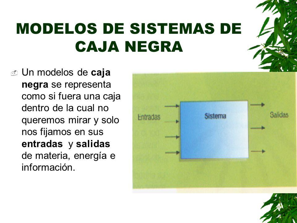 MODELOS DE SISTEMAS DE CAJA NEGRA Un modelos de caja negra se representa como si fuera una caja dentro de la cual no queremos mirar y solo nos fijamos en sus entradas y salidas de materia, energía e información.