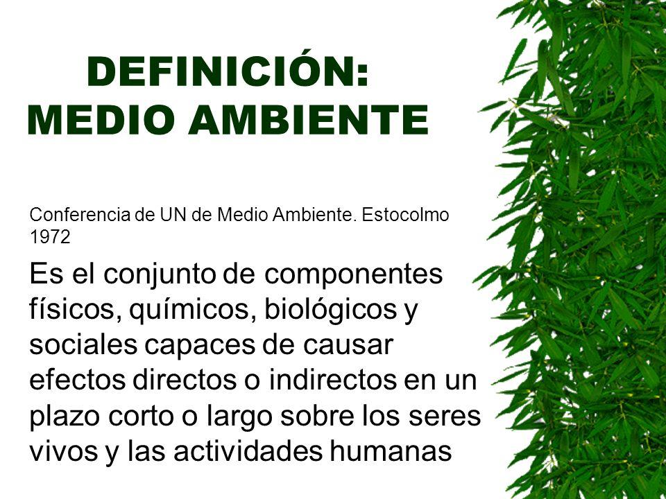 DEFINICIÓN: MEDIO AMBIENTE Conferencia de UN de Medio Ambiente.
