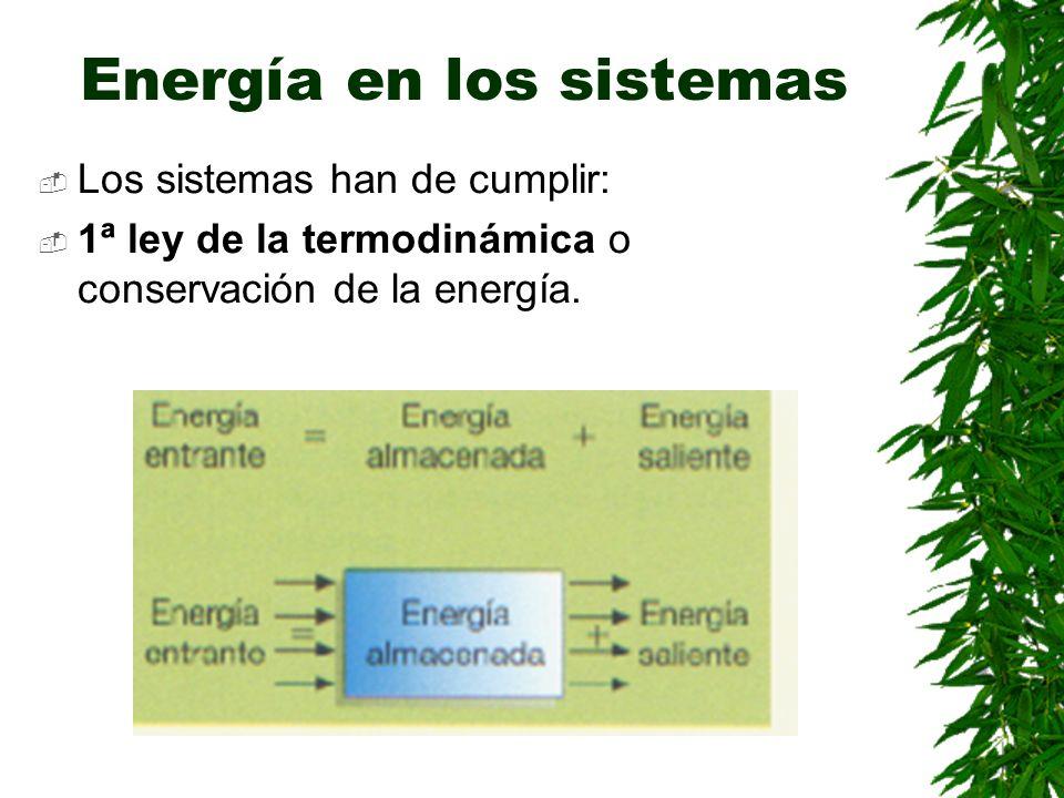 Energía en los sistemas Los sistemas han de cumplir: 1ª ley de la termodinámica o conservación de la energía.