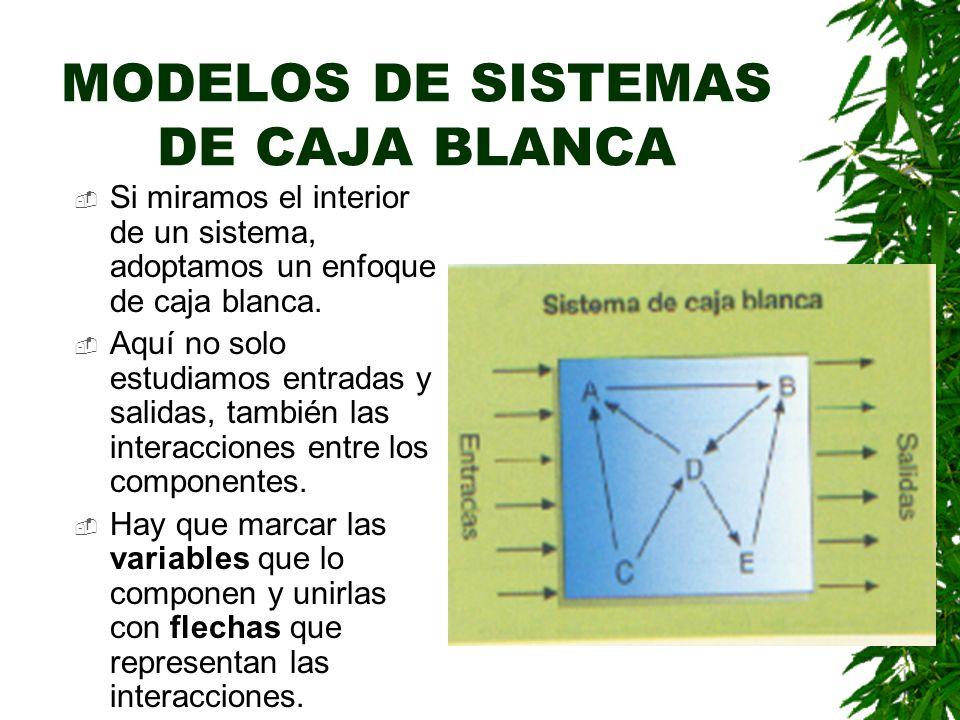MODELOS DE SISTEMAS DE CAJA BLANCA Si miramos el interior de un sistema, adoptamos un enfoque de caja blanca.