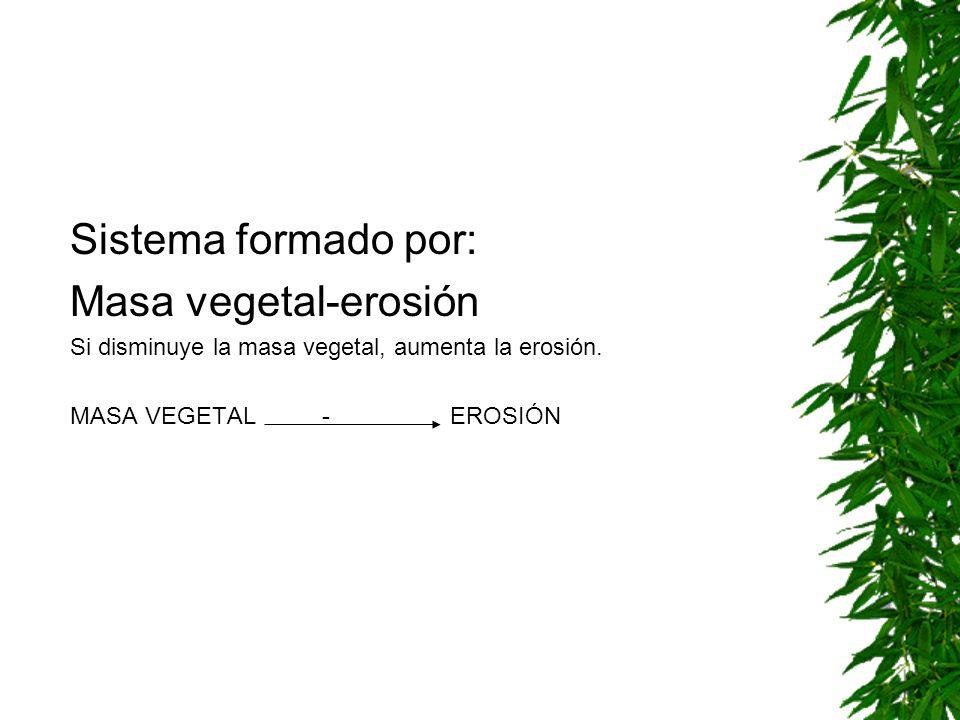 Sistema formado por: Masa vegetal-erosión Si disminuye la masa vegetal, aumenta la erosión.