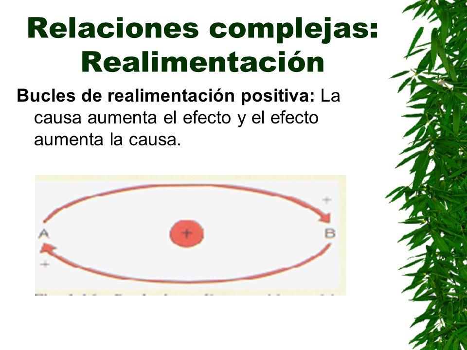 Relaciones complejas: Realimentación Bucles de realimentación positiva: La causa aumenta el efecto y el efecto aumenta la causa.