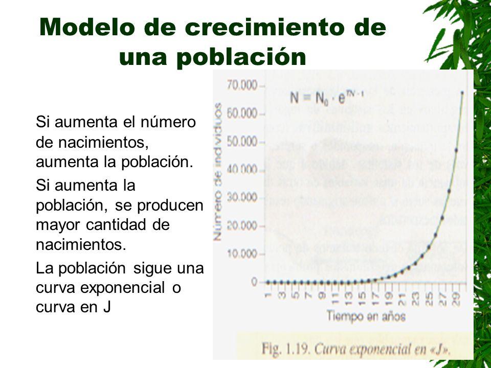 Modelo de crecimiento de una población Si aumenta el número de nacimientos, aumenta la población.