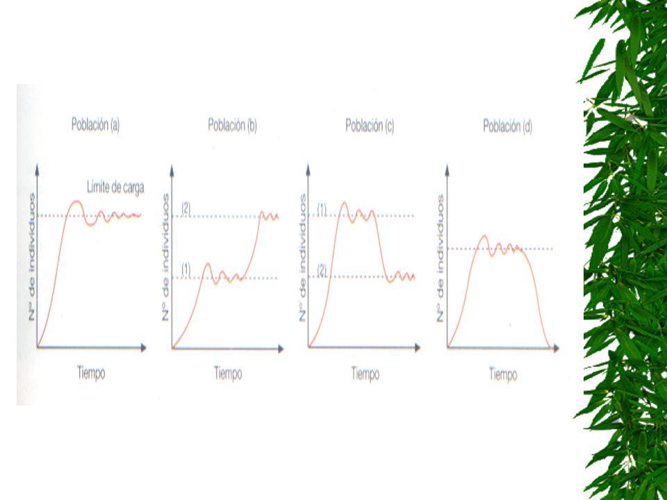 Ejercicio 8 Curvas de crecimiento El número de individuos de una población crece hasta alcanzar un estado estacionario. Sin embargo, su crecimiento en