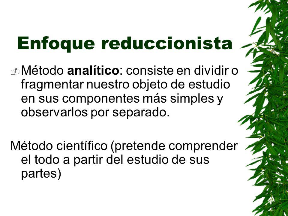 Enfoque reduccionista Método analítico: consiste en dividir o fragmentar nuestro objeto de estudio en sus componentes más simples y observarlos por separado.
