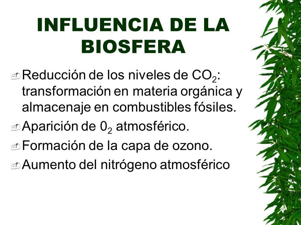 INFLUENCIA DE LA BIOSFERA Reducción de los niveles de CO 2 : transformación en materia orgánica y almacenaje en combustibles fósiles.