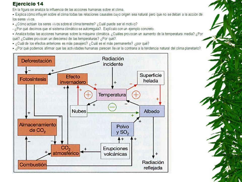 Ejercicio 14 En la figura se analiza la influencia de las acciones humanas sobre el clima.
