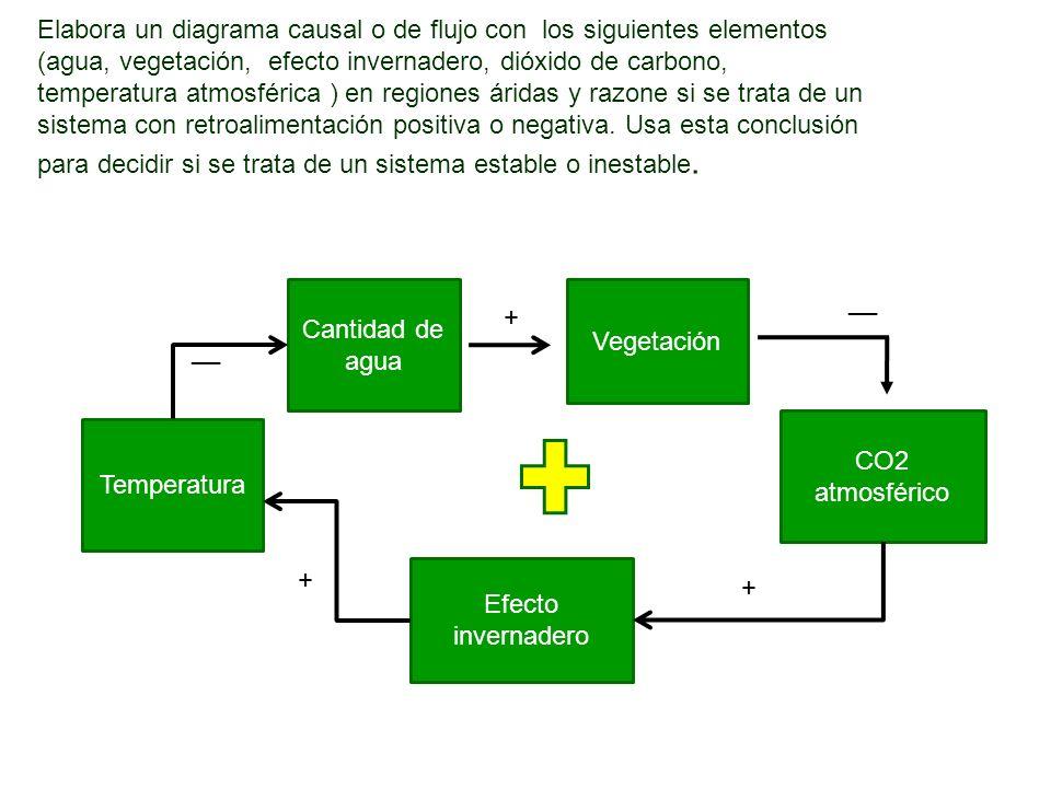 Elabora un diagrama causal o de flujo con los siguientes elementos (agua, vegetación, efecto invernadero, dióxido de carbono, temperatura atmosférica ) en regiones áridas y razone si se trata de un sistema con retroalimentación positiva o negativa.