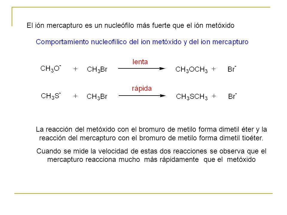 El ión mercapturo es un nucleófilo más fuerte que el ión metóxido La reacción del metóxido con el bromuro de metilo forma dimetil éter y la reacción del mercapturo con el bromuro de metilo forma dimetil tioéter.