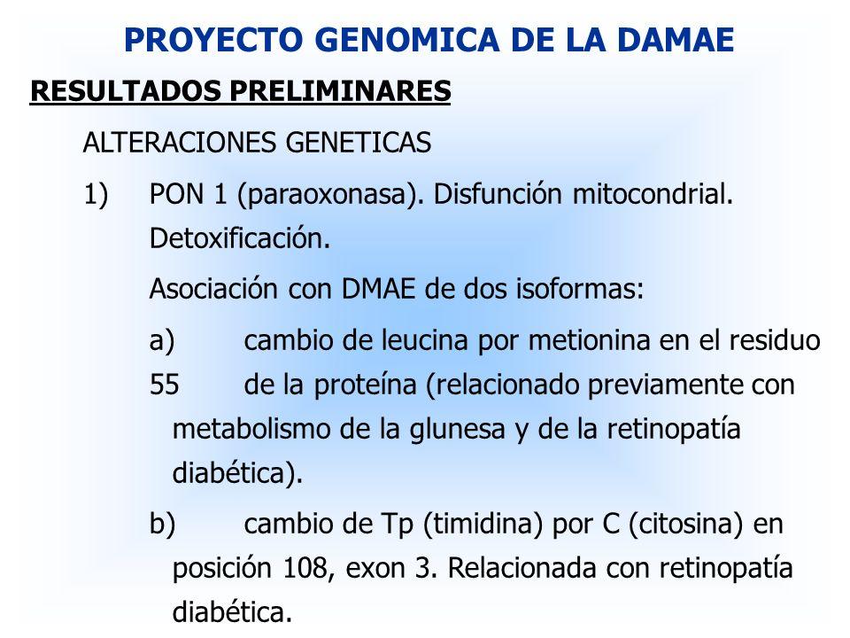 RESULTADOS PRELIMINARES ALTERACIONES GENETICAS 1)PON 1 (paraoxonasa). Disfunción mitocondrial. Detoxificación. Asociación con DMAE de dos isoformas: a