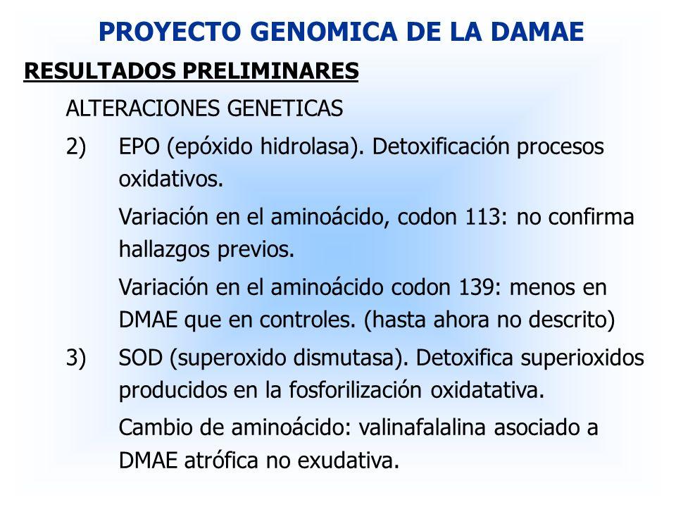 RESULTADOS PRELIMINARES ALTERACIONES GENETICAS 2)EPO (epóxido hidrolasa). Detoxificación procesos oxidativos. Variación en el aminoácido, codon 113: n