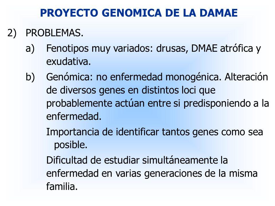 PROYECTO GENOMICA DE LA DAMAE 2)PROBLEMAS. a)Fenotipos muy variados: drusas, DMAE atrófica y exudativa. b)Genómica: no enfermedad monogénica. Alteraci