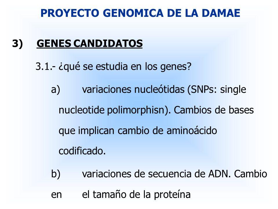 3)GENES CANDIDATOS 3.1.-¿qué se estudia en los genes? a)variaciones nucleótidas (SNPs: single nucleotide polimorphisn). Cambios de bases que implican