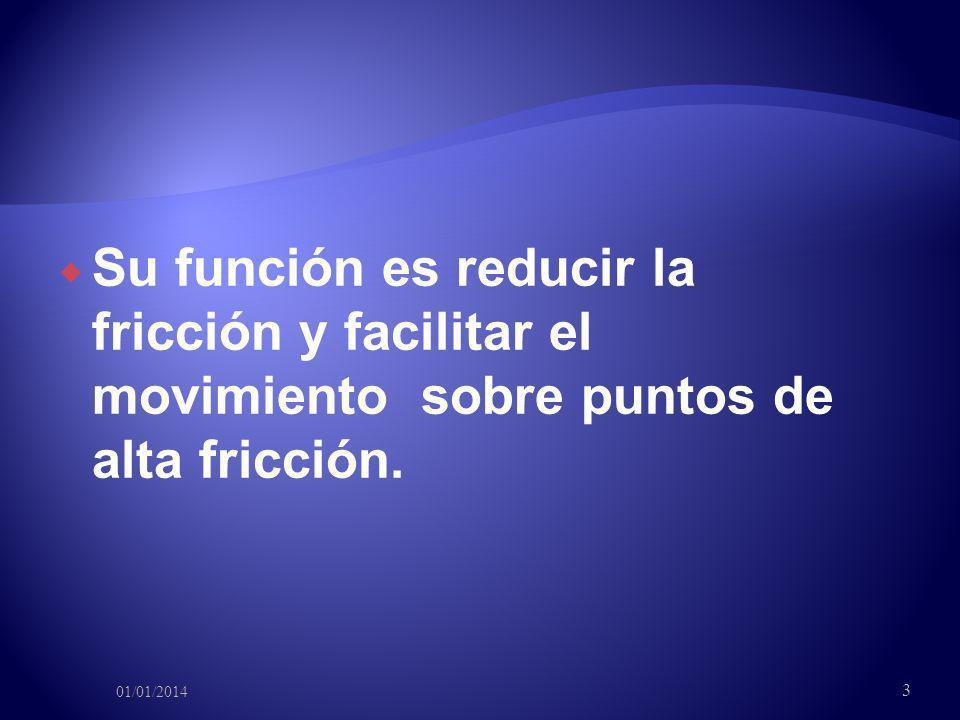Su función es reducir la fricción y facilitar el movimiento sobre puntos de alta fricción. 01/01/2014 3