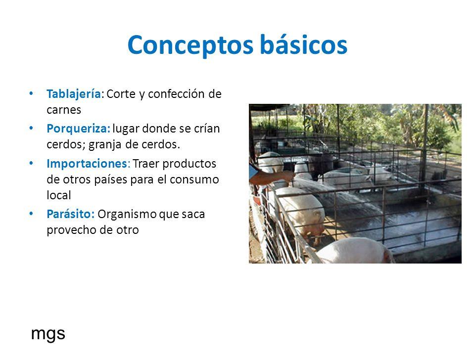 Conceptos básicos Tablajería: Corte y confección de carnes Porqueriza: lugar donde se crían cerdos; granja de cerdos. Importaciones: Traer productos d