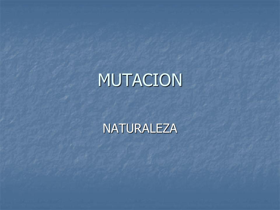 MUTACION Una alteración en la secuencia de bases Púricas y pirimidicas de un gen causada Por un cambio, ya sea por eliminación o Inserción, de una o mas bases puede dar Origen a un producto génico anormal.- esta Alteración en el material genético causa una mutación