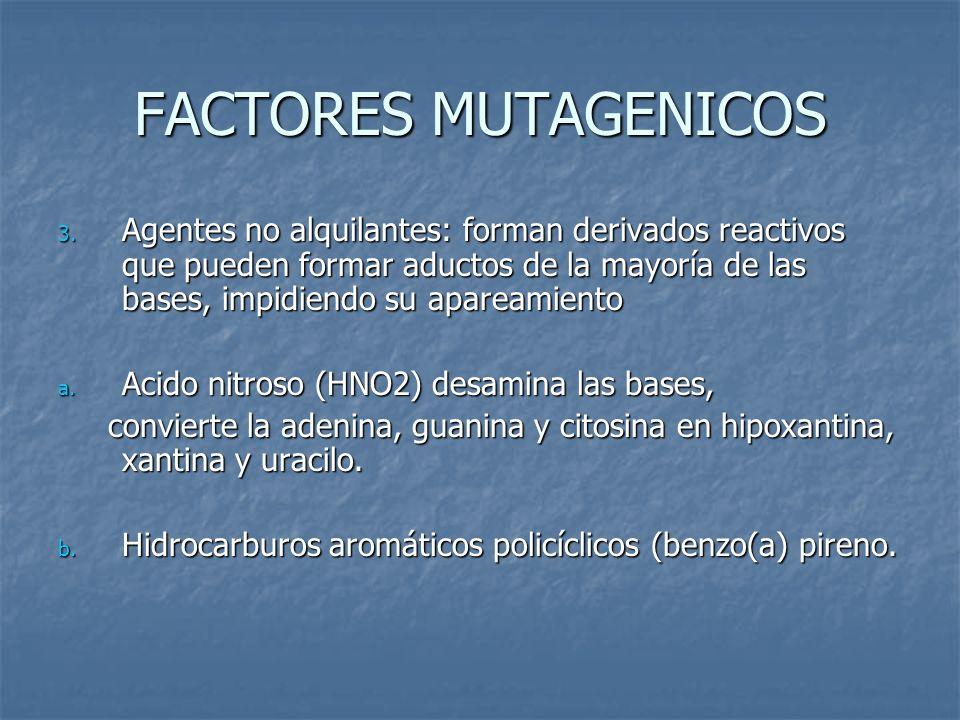 FACTORES MUTAGENICOS 3. Agentes no alquilantes: forman derivados reactivos que pueden formar aductos de la mayoría de las bases, impidiendo su apaream