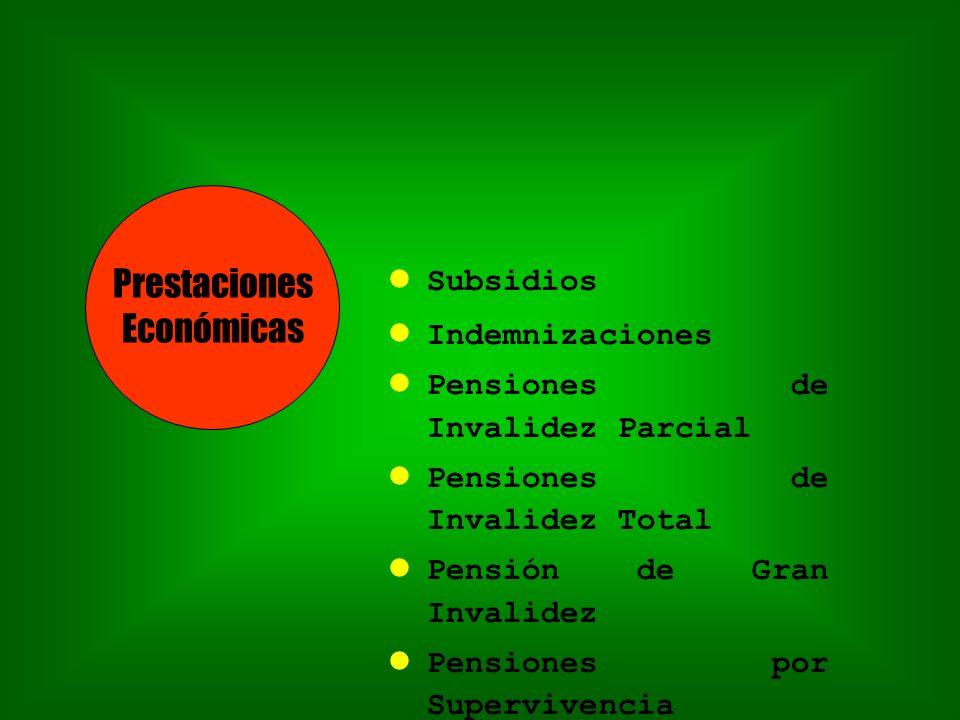 Subsidios Indemnizaciones Pensiones de Invalidez Parcial Pensiones de Invalidez Total Pensión de Gran Invalidez Pensiones por Supervivencia Prestaciones Económicas