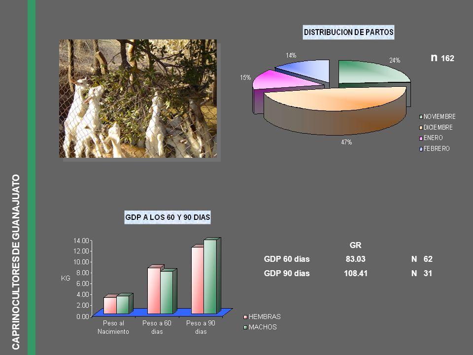 CAPRINOCULTORES DE GUANAJUATO n 162 GR GDP 60 días83.03N 62 GDP 90 días108.41N 31