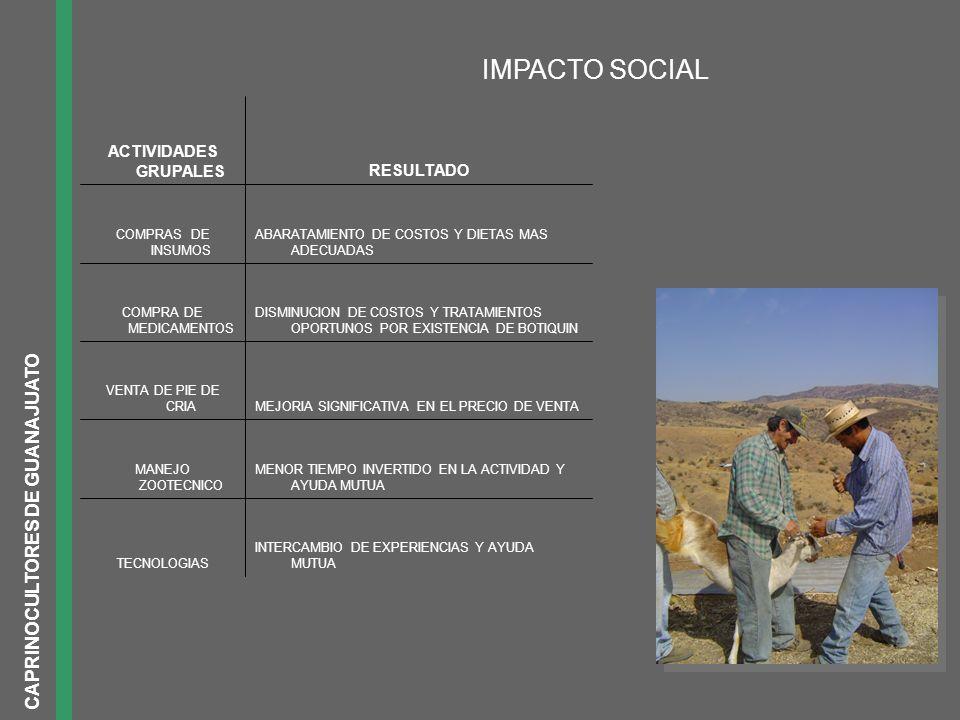 IMPACTO SOCIAL INTERCAMBIO DE EXPERIENCIAS Y AYUDA MUTUATECNOLOGIAS MENOR TIEMPO INVERTIDO EN LA ACTIVIDAD Y AYUDA MUTUA MANEJO ZOOTECNICO MEJORIA SIG