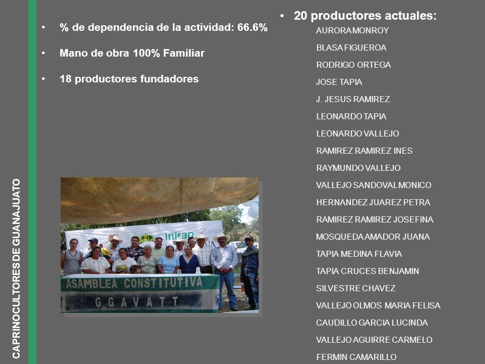 % de dependencia de la actividad: 66.6% Mano de obra 100% Familiar 18 productores fundadores AURORA MONROY BLASA FIGUEROA RODRIGO ORTEGA JOSE TAPIA J.
