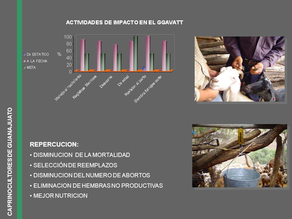 EFECTIVIDAD DE LA INSEMINACION ARTIFICIAL CAPRINOCULTORES DE GUANAJUATO N inseminaciones : 30 N partos : 21