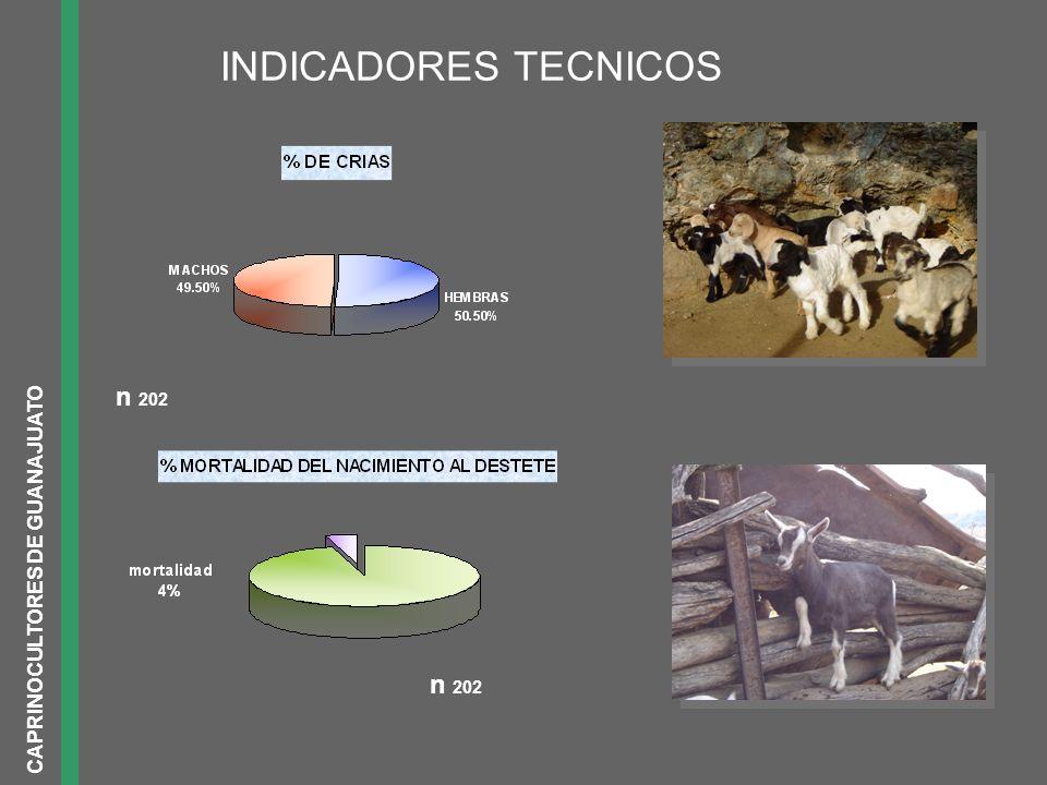 CAPRINOCULTORES DE GUANAJUATO n 202 INDICADORES TECNICOS