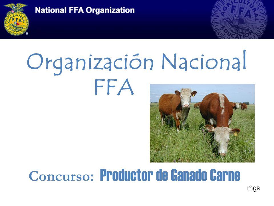 Organización Nacional FFA Concurso: Productor de Ganado Carne mgs