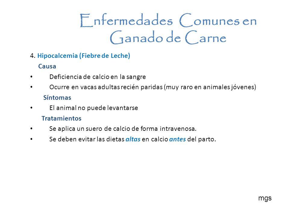 4. Hipocalcemia (Fiebre de Leche) Causa Deficiencia de calcio en la sangre Ocurre en vacas adultas recién paridas (muy raro en animales jóvenes) Sínto