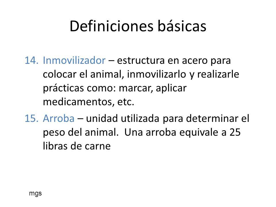 Definiciones básicas 14.Inmovilizador – estructura en acero para colocar el animal, inmovilizarlo y realizarle prácticas como: marcar, aplicar medicam