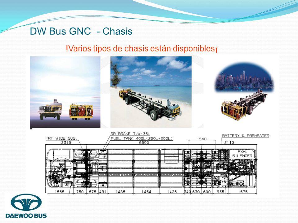 !Varios tipos de chasis están disponibles¡ DW Bus GNC - Chasis