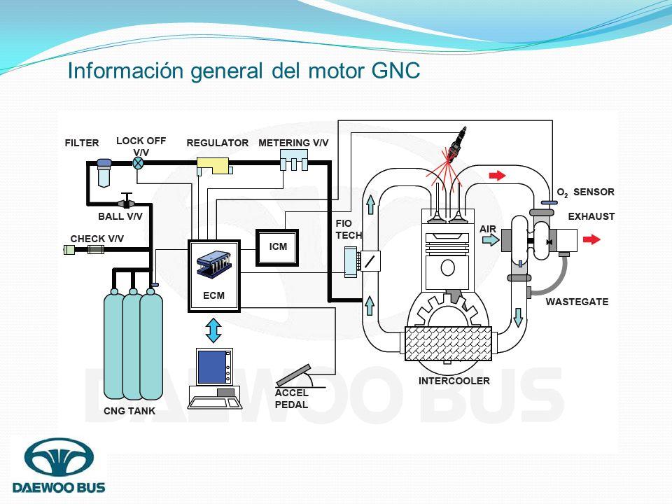 Información general del motor GNC