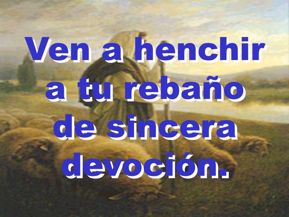 Ven a henchir a tu rebaño de sincera devoción. Ven a henchir a tu rebaño de sincera devoción.