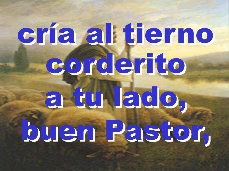 cría al tierno corderito a tu lado, buen Pastor, cría al tierno corderito a tu lado, buen Pastor,