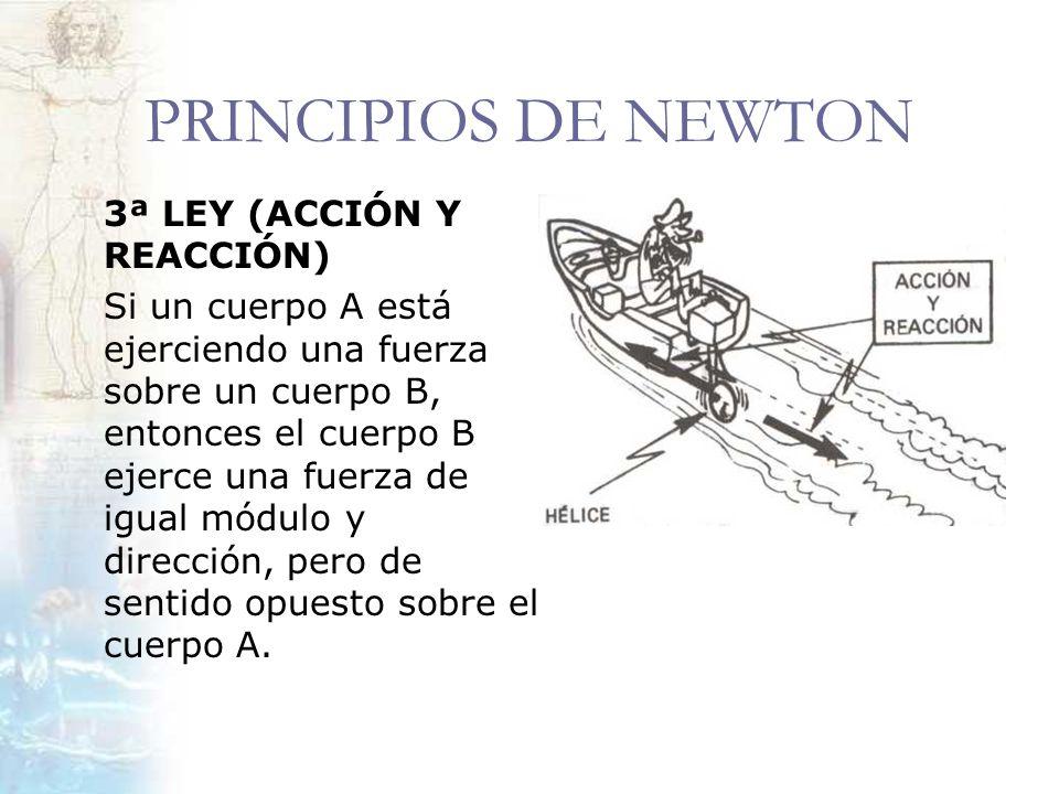PRINCIPIOS DE NEWTON 3ª LEY (ACCIÓN Y REACCIÓN) Si un cuerpo A está ejerciendo una fuerza sobre un cuerpo B, entonces el cuerpo B ejerce una fuerza de