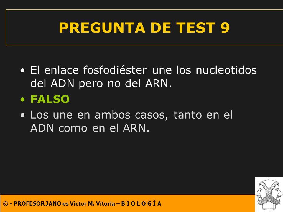© - PROFESOR JANO es Víctor M. Vitoria – B I O L O G Í A PREGUNTA DE TEST 9 El enlace fosfodiéster une los nucleotidos del ADN pero no del ARN. FALSO