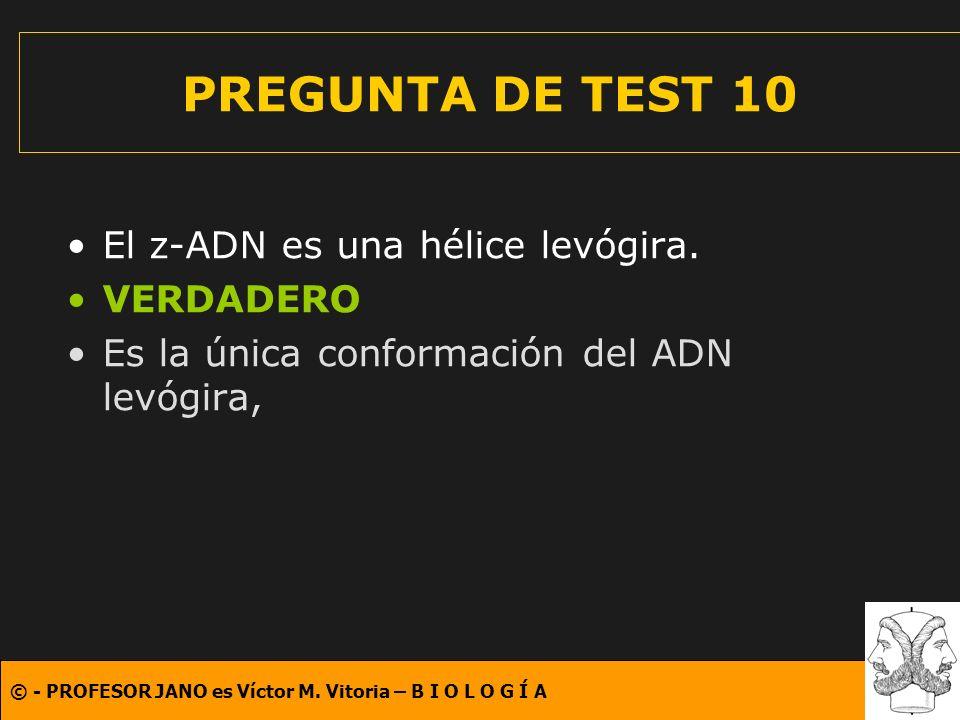 © - PROFESOR JANO es Víctor M. Vitoria – B I O L O G Í A PREGUNTA DE TEST 10 El z-ADN es una hélice levógira. VERDADERO Es la única conformación del A