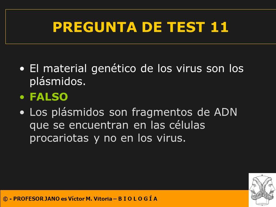 © - PROFESOR JANO es Víctor M. Vitoria – B I O L O G Í A PREGUNTA DE TEST 11 El material genético de los virus son los plásmidos. FALSO Los plásmidos