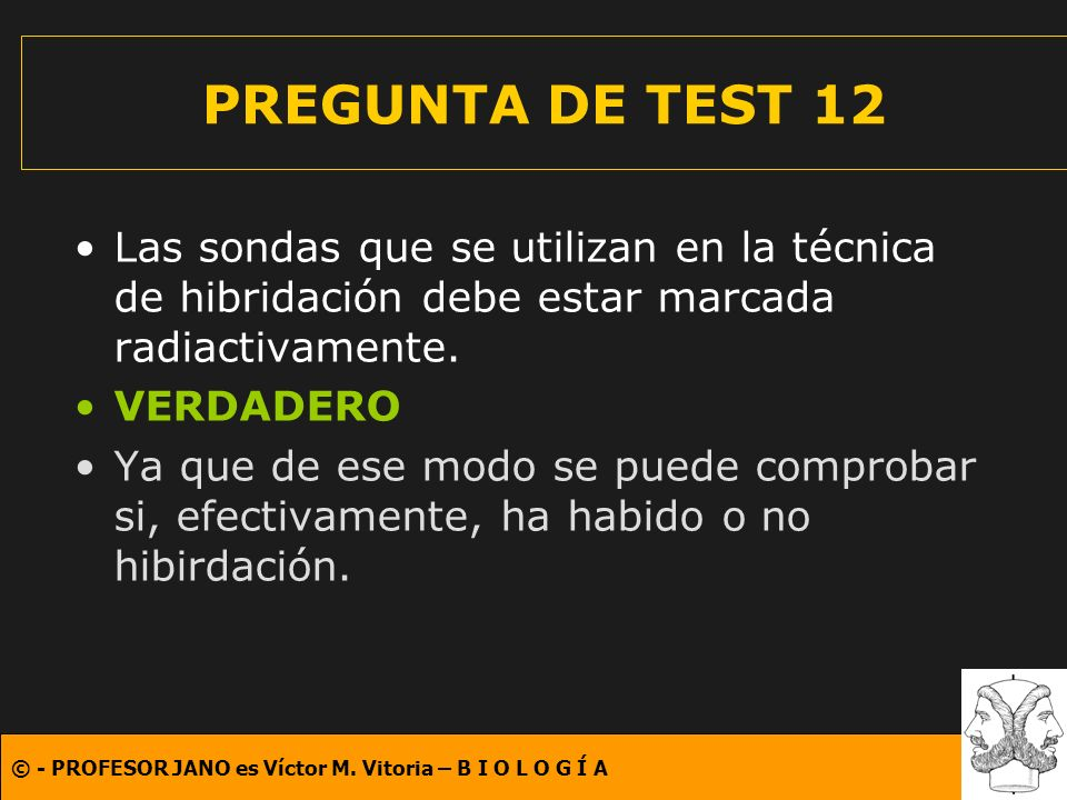 © - PROFESOR JANO es Víctor M. Vitoria – B I O L O G Í A PREGUNTA DE TEST 12 Las sondas que se utilizan en la técnica de hibridación debe estar marcad