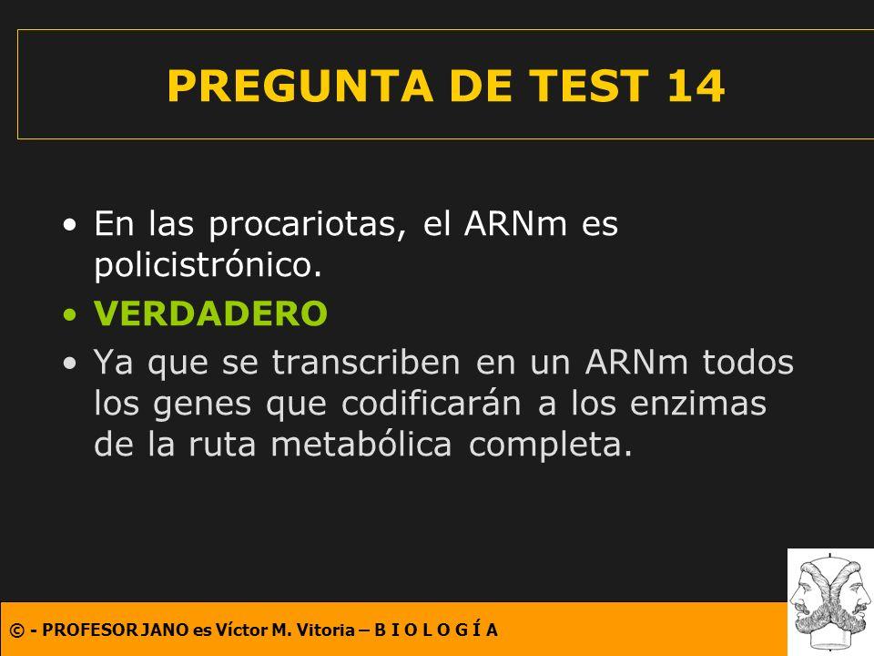 © - PROFESOR JANO es Víctor M. Vitoria – B I O L O G Í A PREGUNTA DE TEST 14 En las procariotas, el ARNm es policistrónico. VERDADERO Ya que se transc