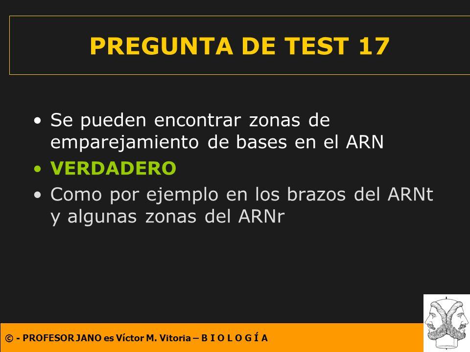 © - PROFESOR JANO es Víctor M. Vitoria – B I O L O G Í A PREGUNTA DE TEST 17 Se pueden encontrar zonas de emparejamiento de bases en el ARN VERDADERO