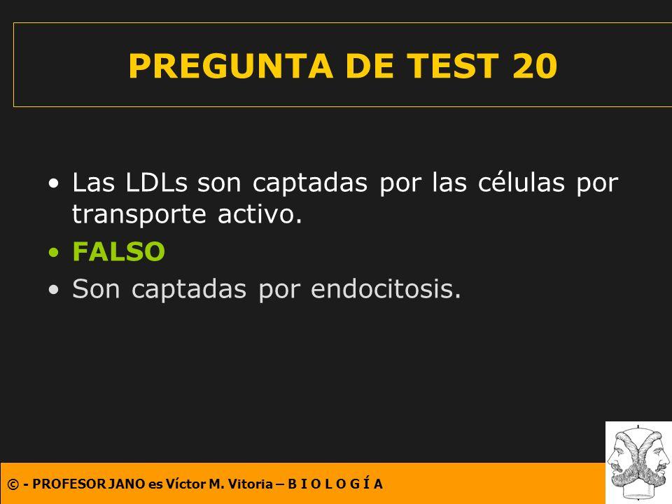 © - PROFESOR JANO es Víctor M. Vitoria – B I O L O G Í A PREGUNTA DE TEST 20 Las LDLs son captadas por las células por transporte activo. FALSO Son ca
