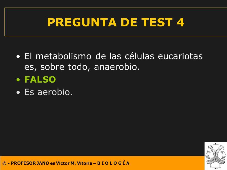© - PROFESOR JANO es Víctor M. Vitoria – B I O L O G Í A PREGUNTA DE TEST 4 El metabolismo de las células eucariotas es, sobre todo, anaerobio. FALSO