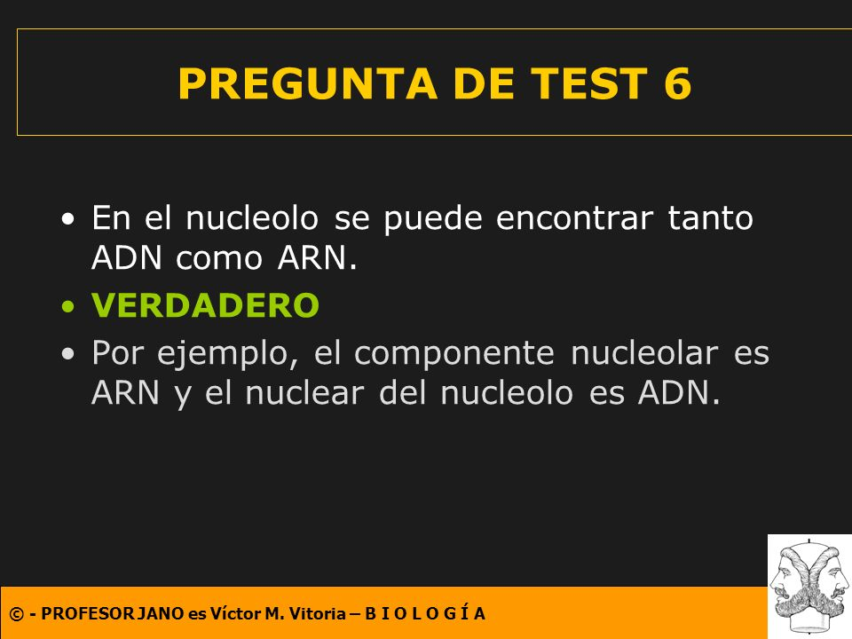 © - PROFESOR JANO es Víctor M. Vitoria – B I O L O G Í A PREGUNTA DE TEST 6 En el nucleolo se puede encontrar tanto ADN como ARN. VERDADERO Por ejempl