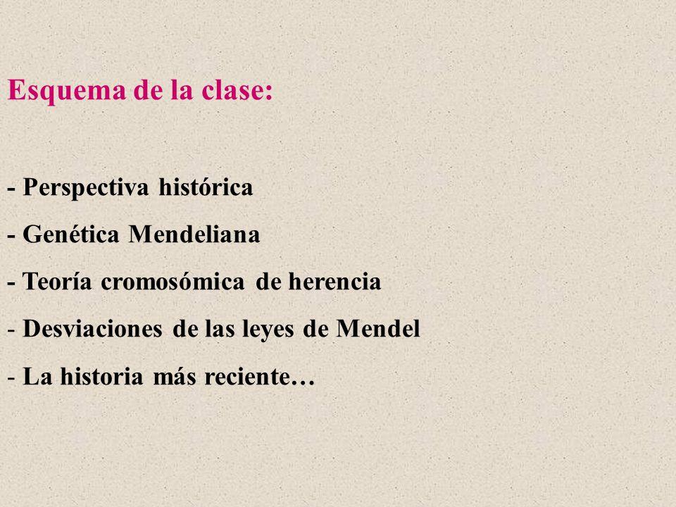 Esquema de la clase: - Perspectiva histórica - Genética Mendeliana - Teoría cromosómica de herencia - Desviaciones de las leyes de Mendel - La histori
