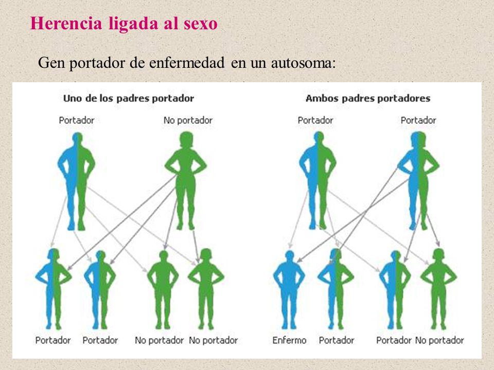 Gen portador de enfermedad en un autosoma: Herencia ligada al sexo