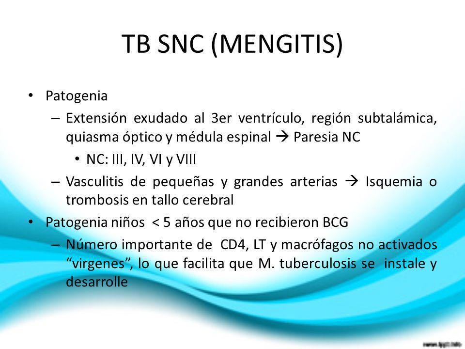 TB SNC (MENGITIS) Patogenia – Extensión exudado al 3er ventrículo, región subtalámica, quiasma óptico y médula espinal Paresia NC NC: III, IV, VI y VI