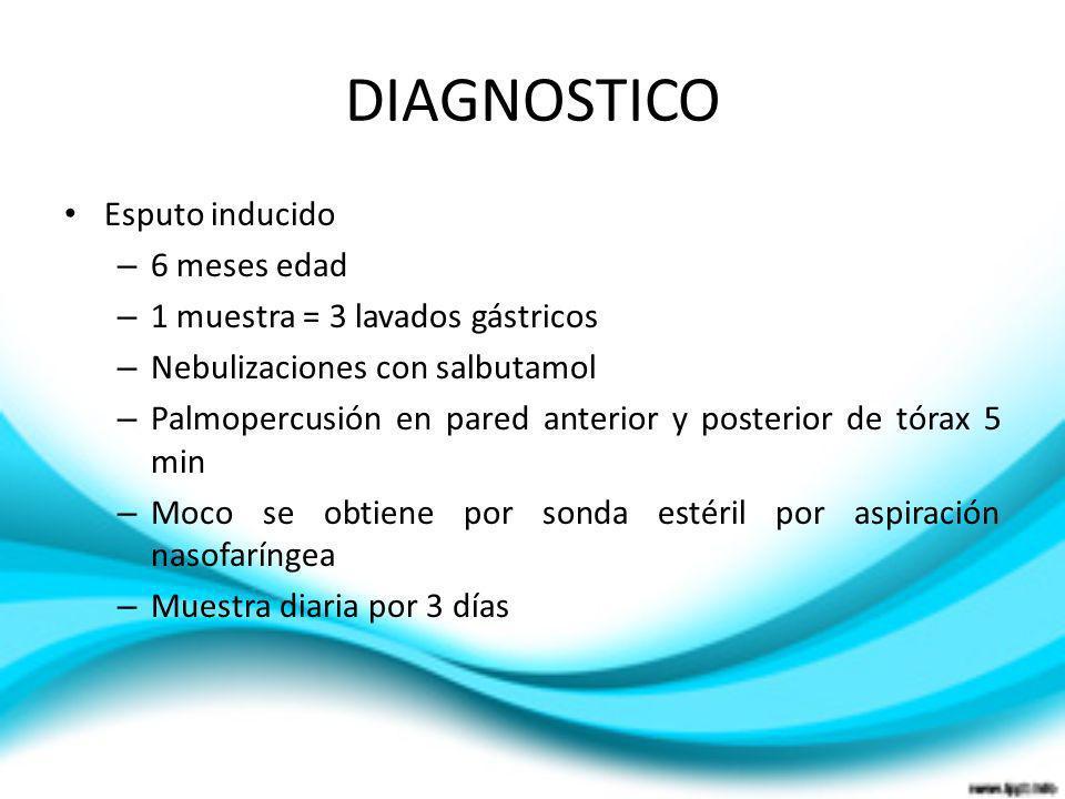 DIAGNOSTICO Esputo inducido – 6 meses edad – 1 muestra = 3 lavados gástricos – Nebulizaciones con salbutamol – Palmopercusión en pared anterior y post