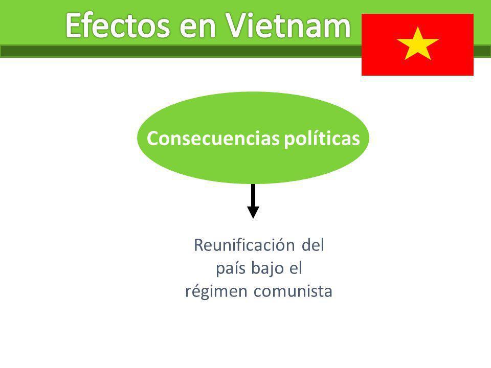 Consecuencias políticas Reunificación del país bajo el régimen comunista